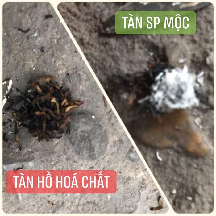 Thuốc Lào Quảng Xương TL01